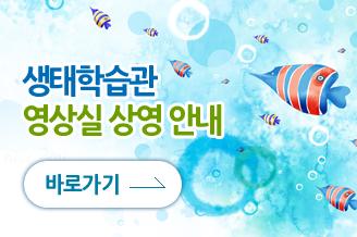 fish_banner_08